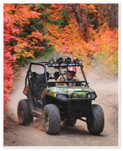 paiute-trail-rzr-action-photo